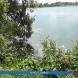 Боротьба з браконьєрством на водоймах Шосткинщини триває