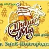 Жителів Сумщини запрошують на еко-фестиваль «Дикий мед»