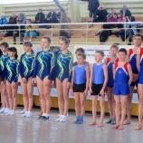 В Шостке состоялся чемпионат  Украины по прыжкам  на акробатической дорожке среди юниоров