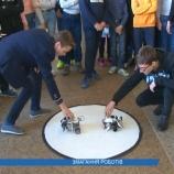 Змагання роботів