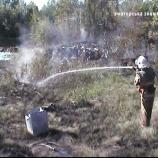 На Шосткинщині знову горіла підпалена трава